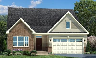 Colerain Twp Single Family Home For Sale: 8128 Valley Crossing Drive