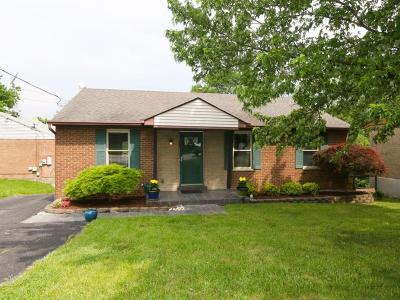 Green Twp Single Family Home For Sale: 4446 North Bend Road