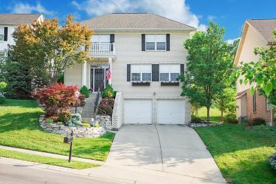 Cincinnati Single Family Home For Sale: 3076 Spencer Hill Lane