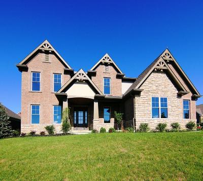 Deerfield Twp. OH Single Family Home For Sale: $650,000