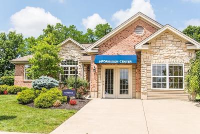 Hamilton Single Family Home For Sale: 704 Oak Forest Drive