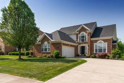 Warren County Single Family Home For Sale: 5313 Renaissance Park Drive