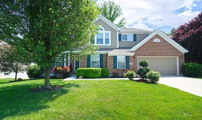 Clermont County Single Family Home For Sale: 966 East Apple Gate