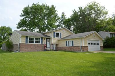 Warren County Single Family Home For Sale: 4199 Hanover Drive