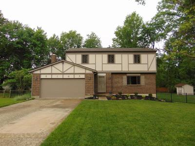 Crosby Twp, Harrison Twp, Miami Twp, Whitewater Twp, Morgan Twp, Ross Twp Single Family Home For Sale: 6143 Doe Court
