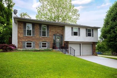 Delhi Twp Single Family Home For Sale: 5019 Riverwatch Drive