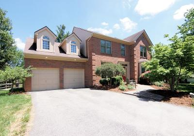 Hamilton County Single Family Home For Sale: 9814 Villageview Court