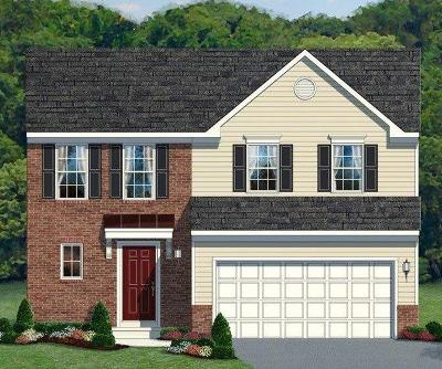 Single Family Home For Sale: 4033 Blue Springs Drive