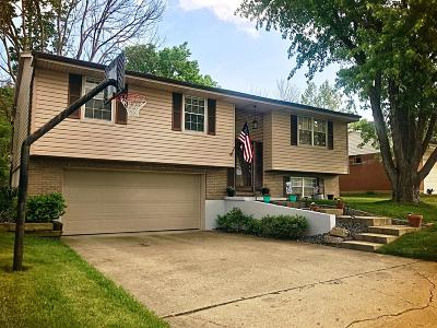 Lawrenceburg Single Family Home For Sale: 1506 Nowlin Avenue