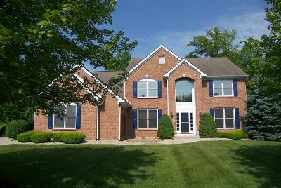 Clermont County Single Family Home For Sale: 6718 Deerview Drive