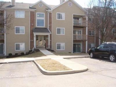 West Chester Condo/Townhouse For Sale: 8945 Eagleview Drive #6