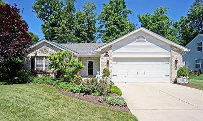 Clermont County Single Family Home For Sale: 2508 Canvasback Circle