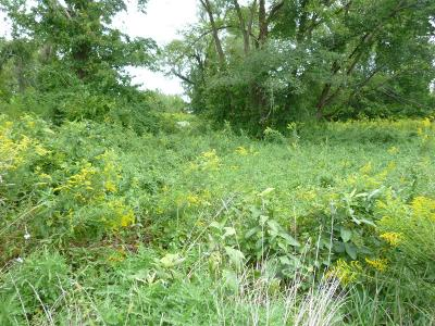 Wayne Twp OH Residential Lots & Land For Sale: $7,900