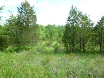 Peebles OH Residential Lots & Land For Sale: $21,000