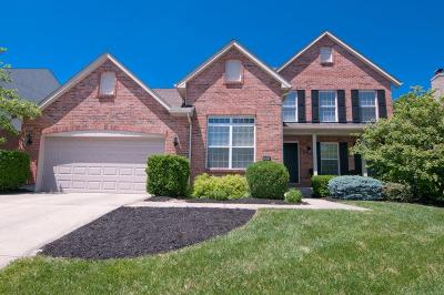 Deerfield Twp. OH Single Family Home For Sale: $349,900