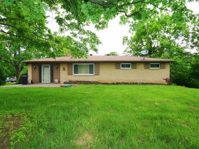 Deerfield Twp. Single Family Home For Sale: 9534 Winding Lane