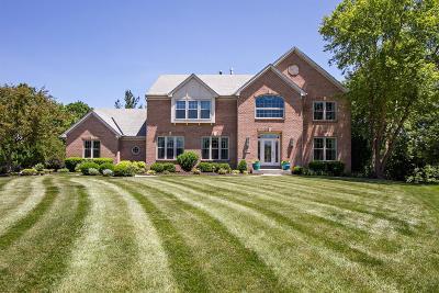 Mason Single Family Home For Sale: 4498 Appaloosa Trail