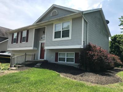 Hidden Valley Single Family Home For Sale: 21051 Sunnyridge Drive