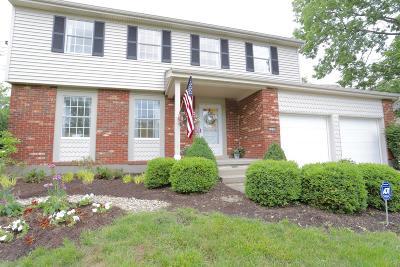 Hamilton County Single Family Home For Sale: 7890 Blairhouse Drive