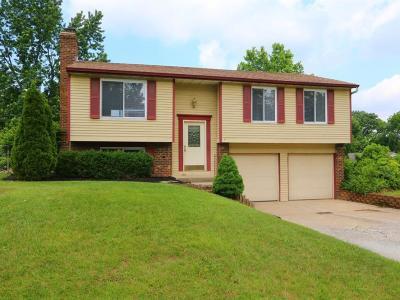 Mason Single Family Home For Sale: 5049 Mason Hills Court