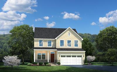 Single Family Home For Sale: 715 Ella Court