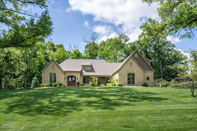 Single Family Home For Sale: 8155 S Clippinger Drive