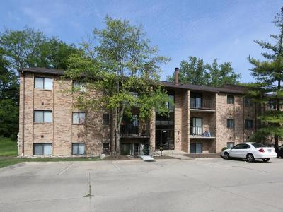 Colerain Twp Condo/Townhouse For Sale: 7235 Creekview Drive #5
