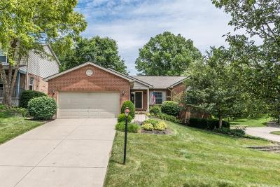 Delhi Twp Single Family Home For Sale: 622 North Bay Court