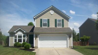 Single Family Home For Sale: 6073 Weber Oaks Drive
