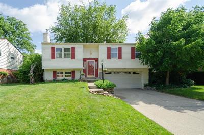 Single Family Home For Sale: 484 Grandin Avenue