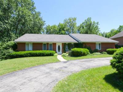 Single Family Home For Sale: 118 E Concord Drive