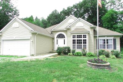 Adams County, Brown County, Clinton County, Highland County Single Family Home For Sale: 1197 Lorelei Drive