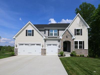 Single Family Home For Sale: 5360 Hollybrook Lane