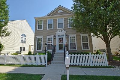 Single Family Home For Sale: 7247 Mariemont Crescent