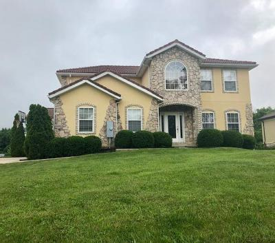 Single Family Home For Sale: 6265 Ross Road
