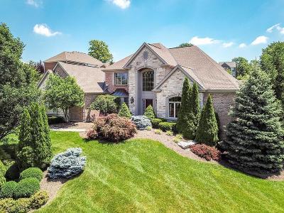 Single Family Home For Sale: 7763 Ingrams Ridge Drive