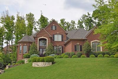 Single Family Home For Sale: 8593 Stoney Bridge Drive