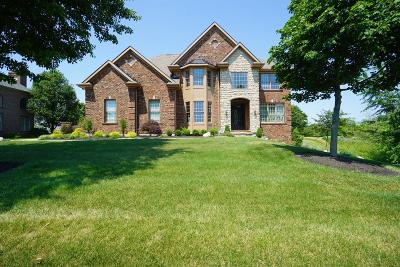Single Family Home For Sale: 8156 Cherry Laurel Drive