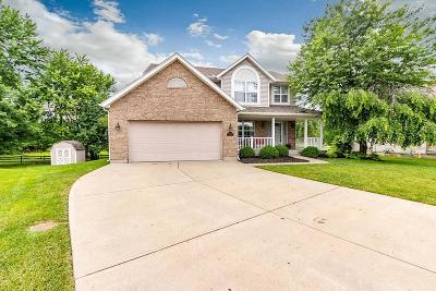 Single Family Home For Sale: 7191 Wills Way