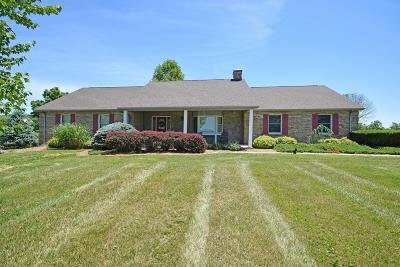 Dillsboro Single Family Home For Sale: 1603 S Co Rd 750 E