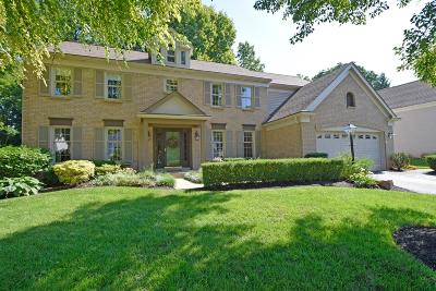 Single Family Home For Sale: 8007 Ashley View Drive