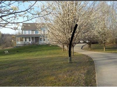 Adams County, Brown County, Clinton County, Highland County Single Family Home For Sale: 362 Heritage Ridge Road