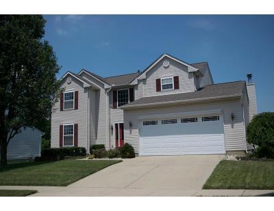 Single Family Home For Sale: 184 Saddle Creek Lane