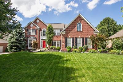 Single Family Home For Sale: 3942 Granite Court