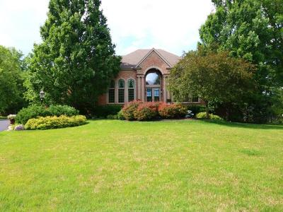 Single Family Home For Sale: 7950 Kugler Mill Road