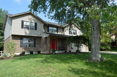 Single Family Home For Sale: 9593 Kelly Drive
