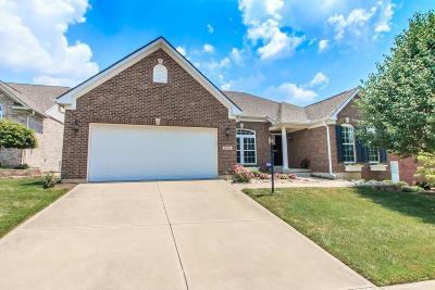 Turtle Creek Twp Single Family Home For Sale: 1330 Oakhurst Court