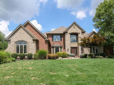 Single Family Home For Sale: 186 Vista Ridge Drive