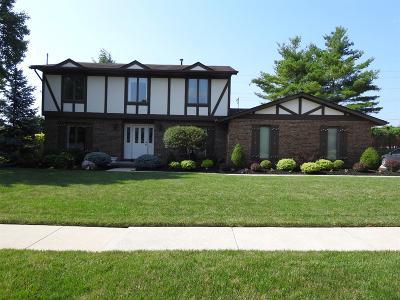 Hamilton Single Family Home For Sale: 485 Shultz Drive