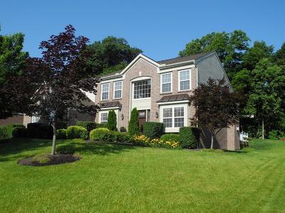 Hamilton Single Family Home For Sale: 6153 Avebury Court